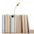 Bookshelf Vase